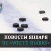 Новости января HC «White Sharks»