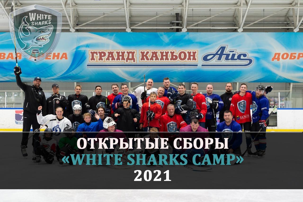 Открытые сборы White Sharks camp 2021
