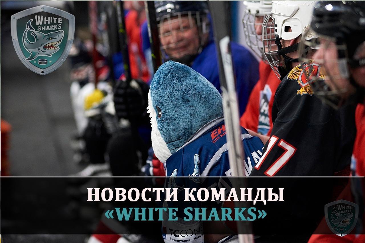 Новости команды White-Sharks